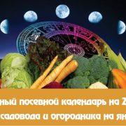 Лунный календарь огородника-садовода на январь 2021 года