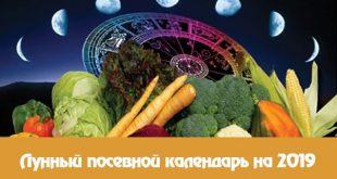 Лунный календарь огородника садовода на январь 2021 года