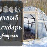 Лунный календарь огородника-садовода на февраль 2019 года