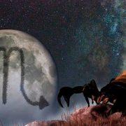 Гороскоп на 2019 год по знакам зодиака и по году рождения: скорпион