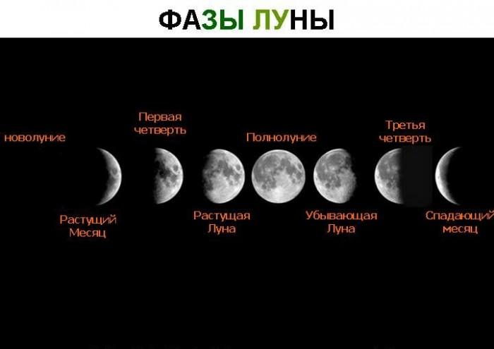 Лунный календарь стрижек на май 2019 года: самые благоприятные дни