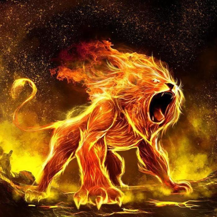Любовный гороскоп на 2020 год: лев-женщина