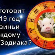 Гороскоп на 2020 — год свиньи: что сулит 2020 год каждому из нас?