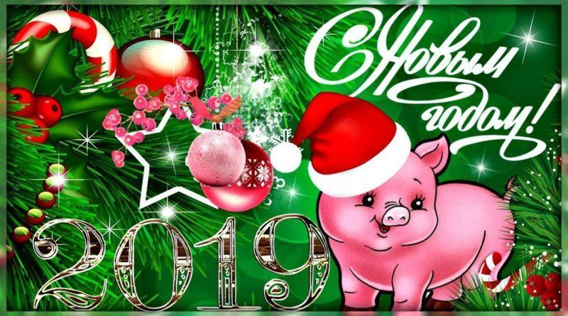Что дарить на новый 2020 год свиньи по знакам зодиака?