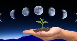 Фазы луны в апреле 2020 года по дням