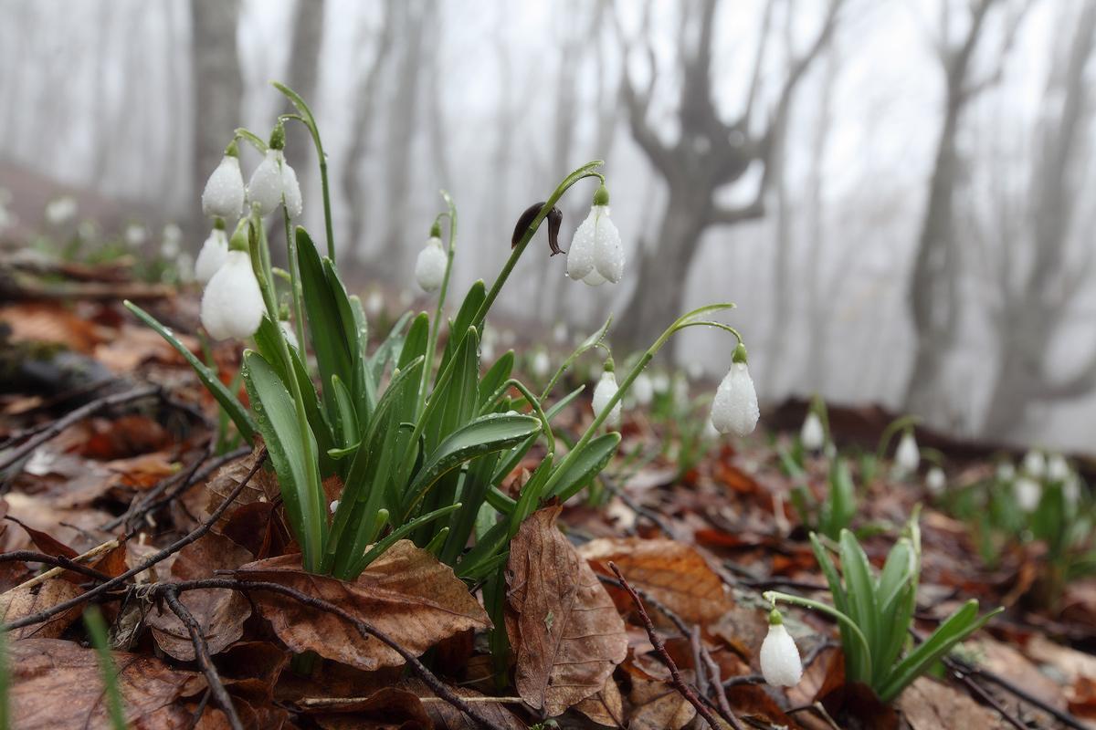 Красивые картинки про апрель