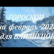 БЛИЗНЕЦЫ - ФЕВРАЛЬ 2020. Гороскоп от Марины Скади